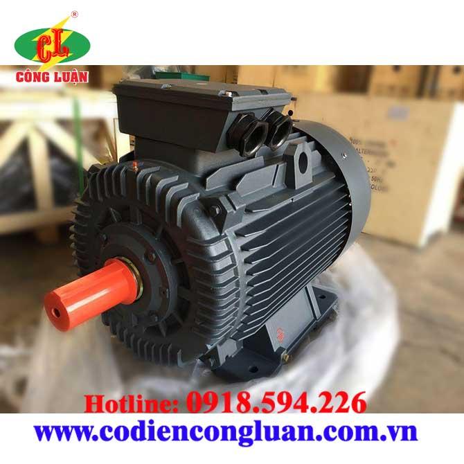 Motor - động cơ điện QM